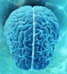 Детектор из мышиных мозгов