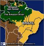 Пожары охлаждают леса Амазонки