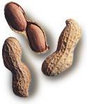 Скоро появятся гипоаллергенные арахисовые орехи