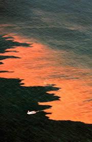 """""""Красный прилив"""" на Восточном побережье США"""