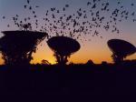 Слухи о сигнале внеземной цивилизации сильно преувеличены
